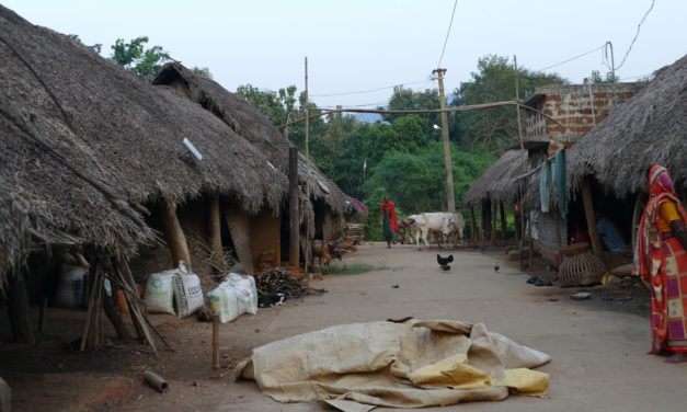 Too Little Too Late: Apathy to the Rural Sector