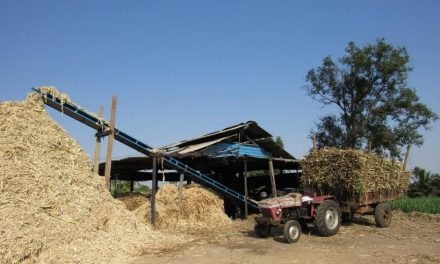 BURDENS OF SILK FARMERS: Talagavadi village, Mandya District
