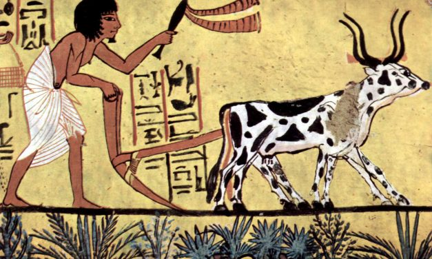 Agrarian concerns, Food security and Sustainability (APU)